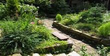 растения для ландшафтного дизайна купить