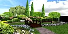 каталог растений для ландшафтного дизайна
