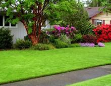 искусственно газон