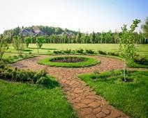 садовые растения оптом