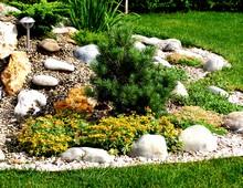 обрамление клумбы из красивоцветущие кустарников