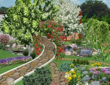декоративные деревья и кустарники купить